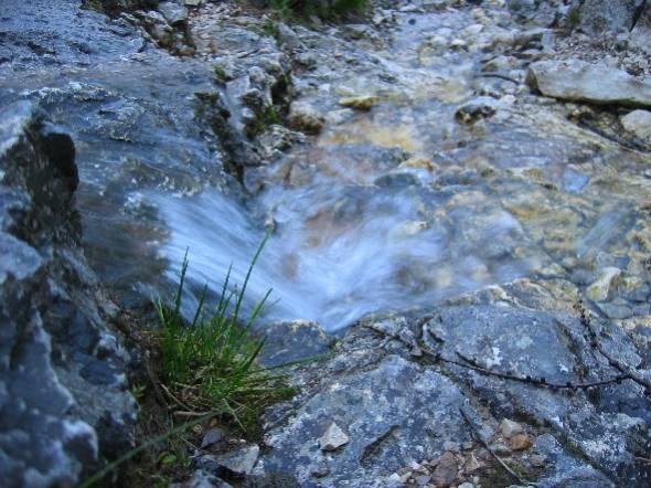 Studenec nad pastirskim stanom - voda teče po poti...
