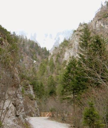 V Dragi je meja med pomladjo in zimo