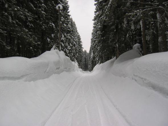 Zimska pravljica na Pokljuki 11. marca 2004